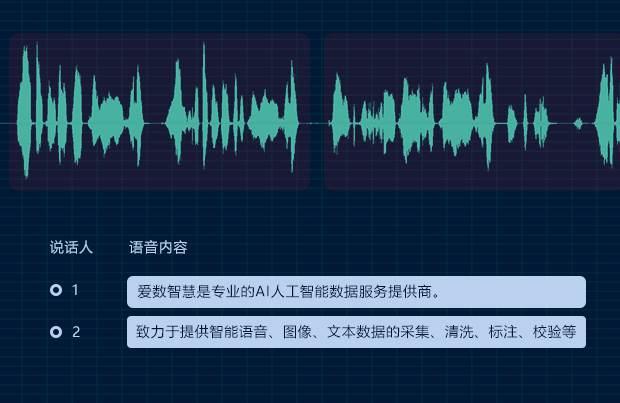 爱数智慧张晴晴:采用人机协作模式,为智能世界提供充足数据生产力