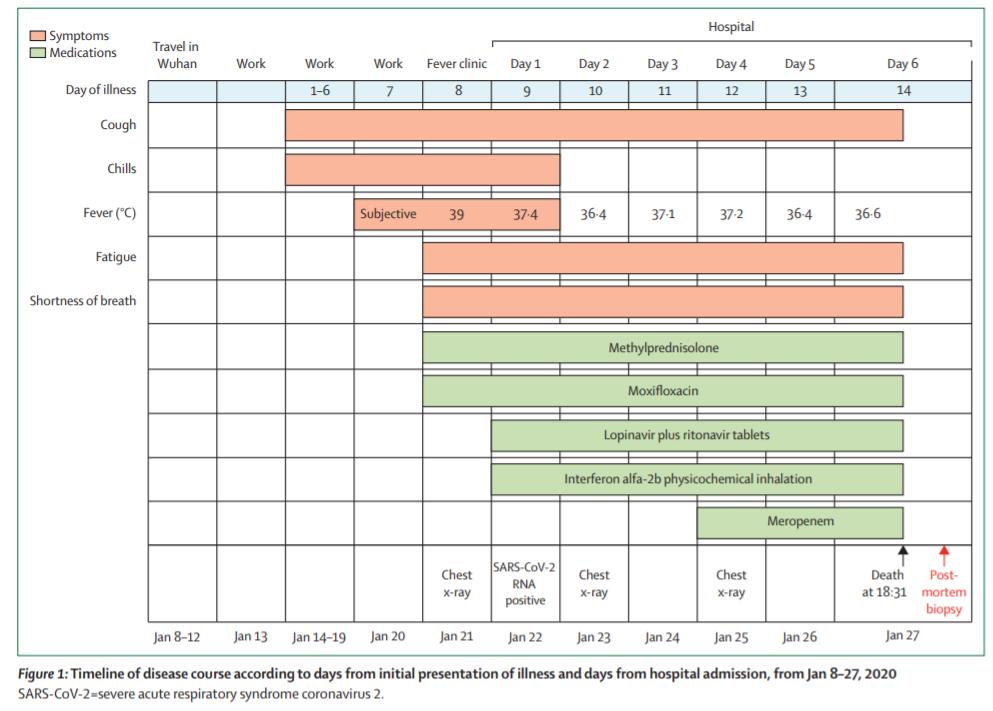 首份新冠肺炎病理报告发布:病理特征与SARS和中东呼吸综合征相似