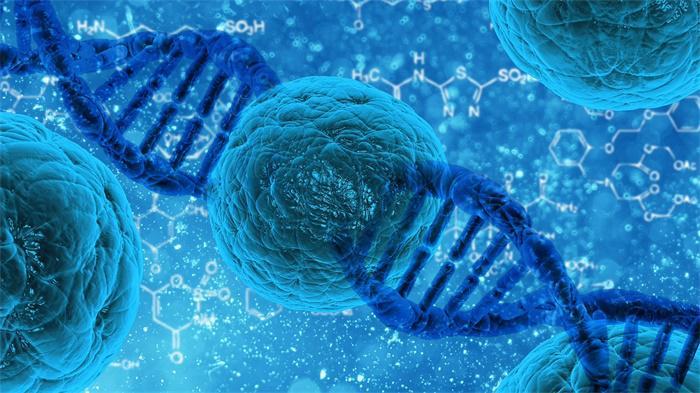 全球首个CRISPR疗法人体试验结果公布:治疗晚期肺癌疾病安全可行
